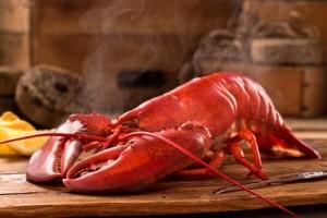 Maine - bekannt für seinen Steamed Lobster